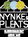 Nynke's Pleats